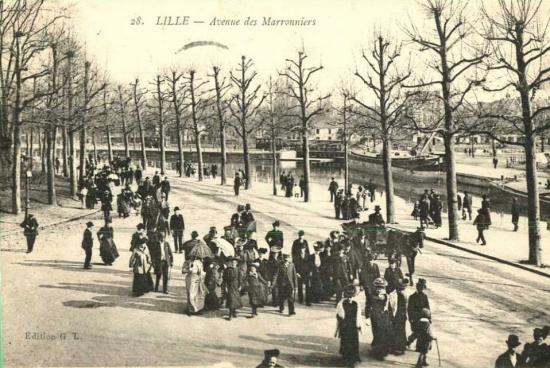 Avenue des Marronniers