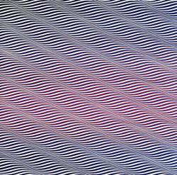 Bridget Riley. Cataracte 3 (1967)
