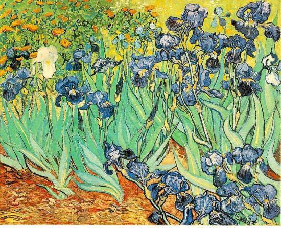 Van Gogh. Les iris, 1889