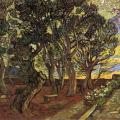 Vincent van Gogh. Le jardin de l'hôpital Saint-Paul (déc. 1889)