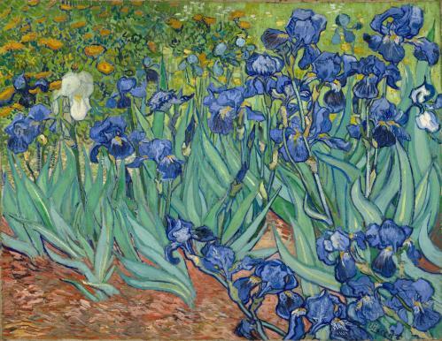 Vincent Van Gogh. Les iris (1889)