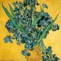 Vincent Van Gogh. Les iris (1890)