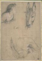 Charles Le Brun. Feuille d'études (1689)