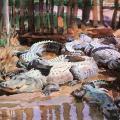 John Singer Sargent. Alligators dans la boue (1917)