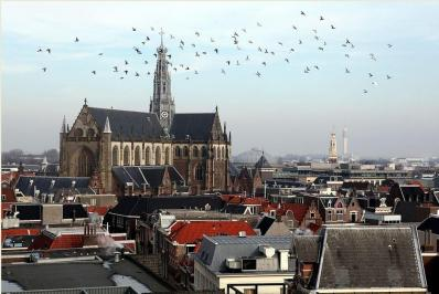 L'église Saint-Bavon de Haarlem aujourd'hui
