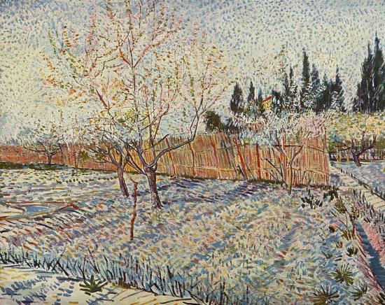 Van Gogh. Verger avec cyprès, 1888