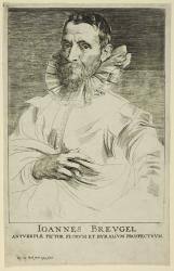 Van Dyck. Portrait de Jan Brueghel, gravure