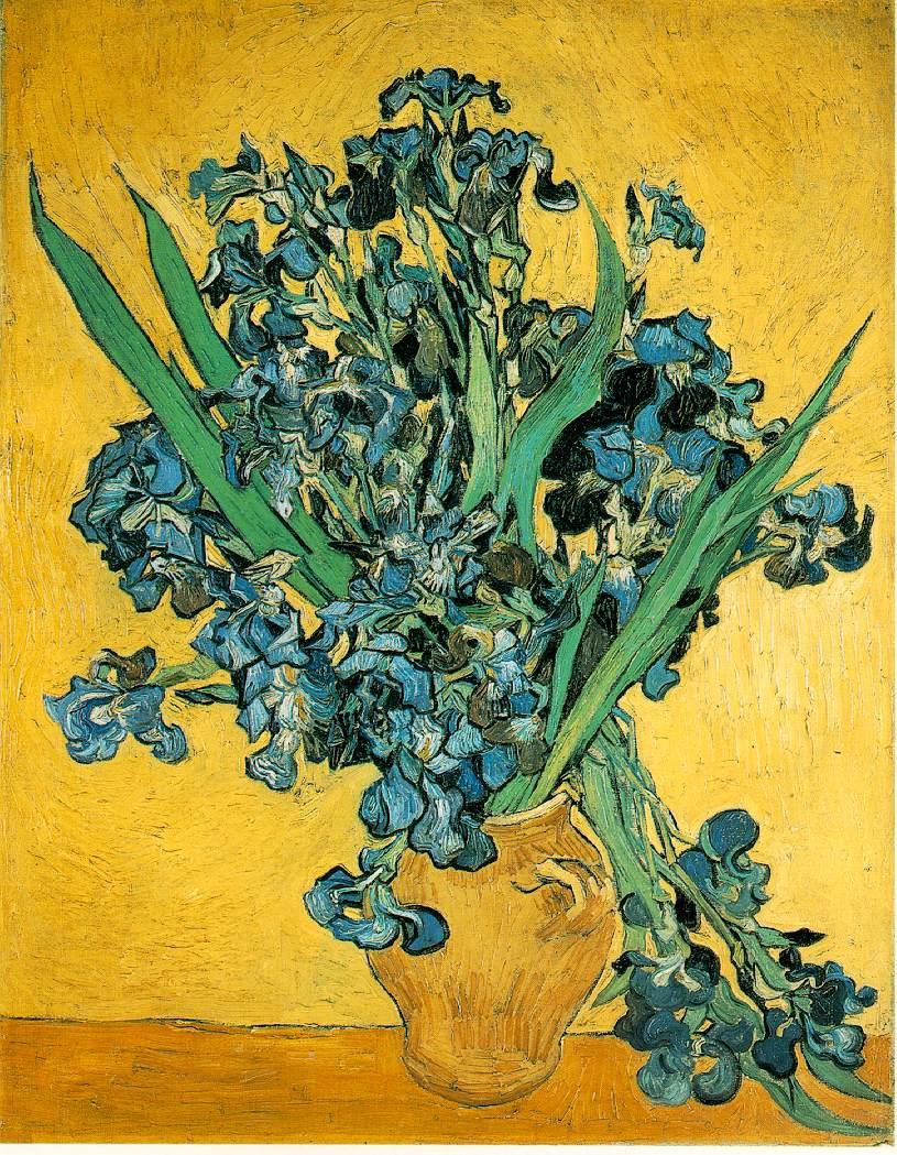 Vincent Van Gogh Les Iris 1889